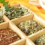 The Types of Loose Leaf Teas
